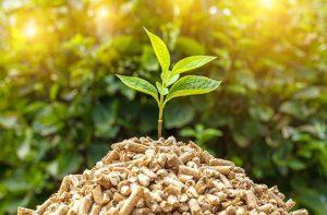 R&B maquinaria para biomasa y reciclaje